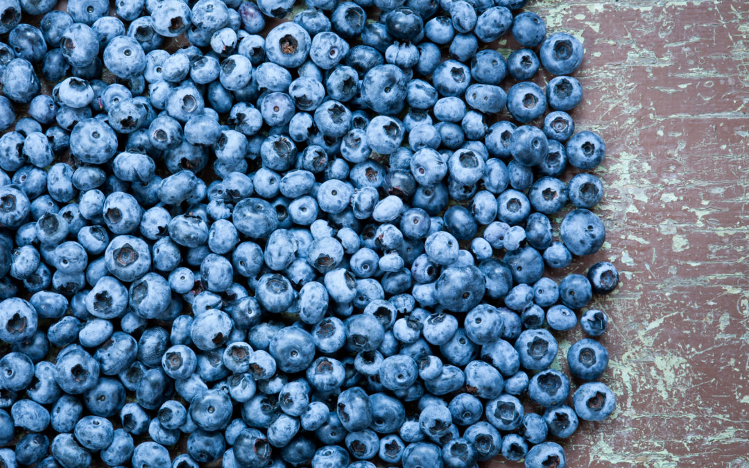 Fruit d'Or Nutraceuticals premiers Wild Blueberry powders