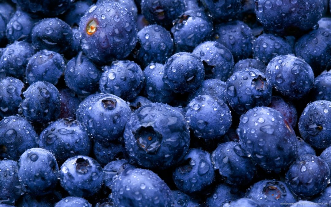Wild blueberries: a nutrient-dense powerful superfruit