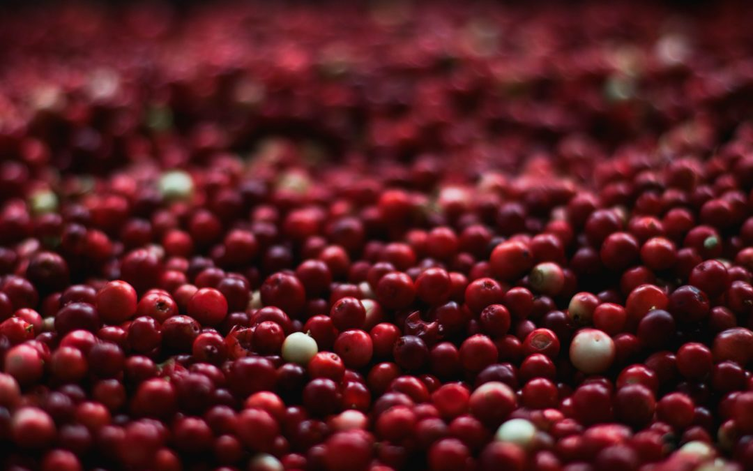Tips for selecting best quality whole fruit cranberry