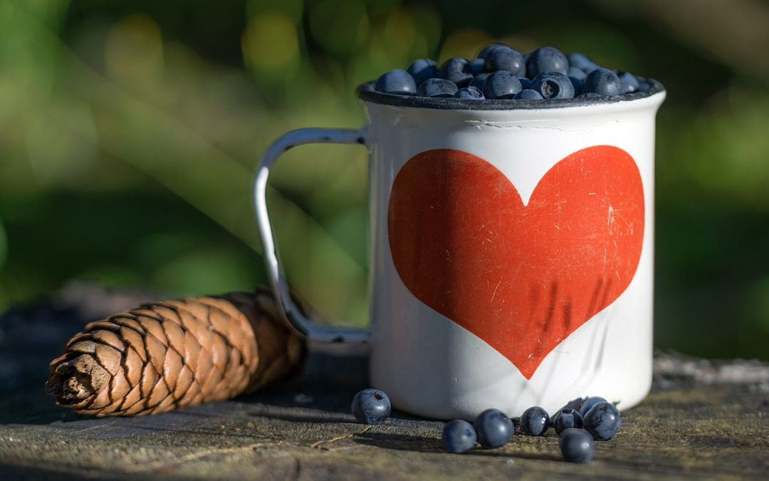 Stay heart-healthy with whole-fruit wild blueberry powder