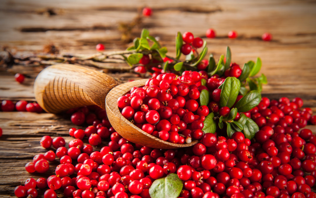 Not all cranberry ingredients, or products, are the same
